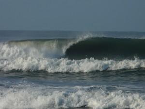 wave costa rica
