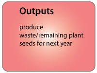 agri_outputs