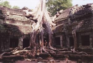 biological-Cambodia2