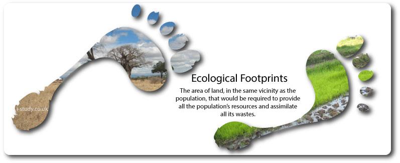 ecological_footprint